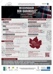 Bor-Barangoló plakátok