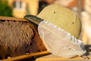Bánhegyi Roland méhész